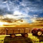 2015 Yılı Tarımsal Destekleri Biliyor musunuz?