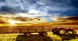 Tarıma Dayalı Yatırımlara Kırsal Kalkınma Destekleri Geldi!